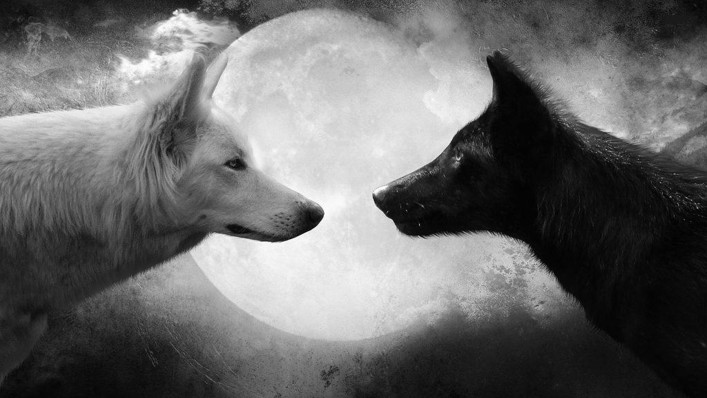 Притча о двух волках, которую вы не забудете