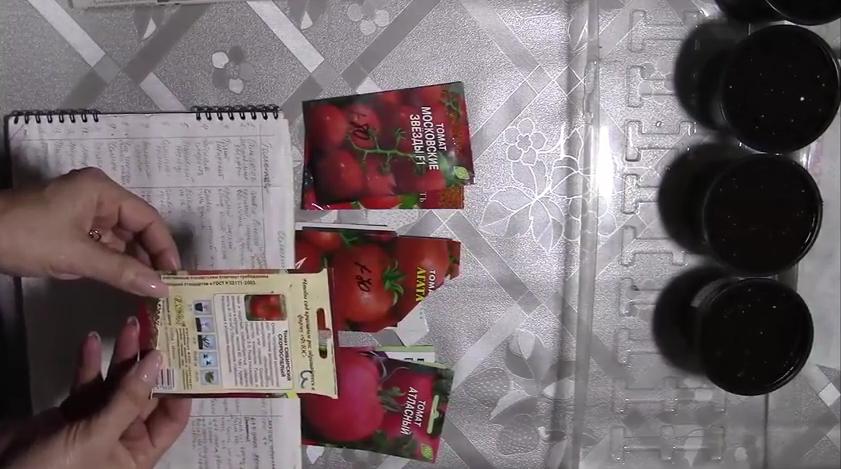 Как выбрать семена помидор для рассады