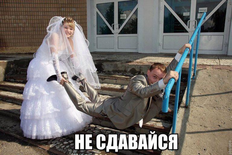 сложно картинки про женитьбу приколы организациях ип, которых