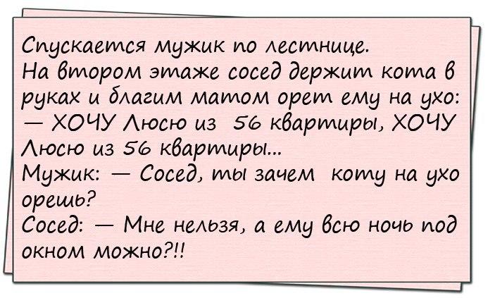 Анекдот про девочек